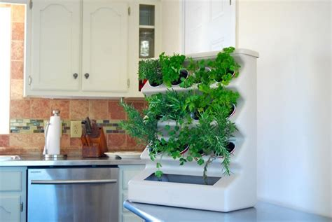 herbes aromatiques cuisine déco cuisine en herbes aromatiques en pots en 20 idées cool