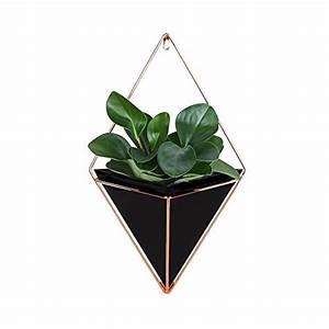 Pflanzen Zum Aufhängen : vasen und andere vasen bert pfe von lembeauty online ~ Michelbontemps.com Haus und Dekorationen