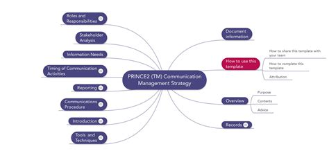 Information Management Strategy Template by Prince2 Communication Management Strategy Template