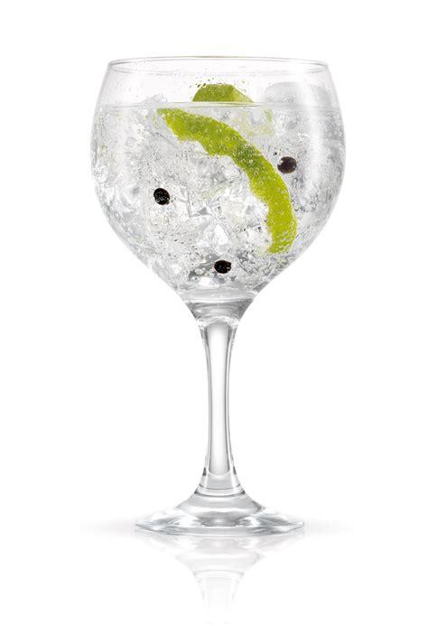 gin tonic bilder 5 recetas de gin tonic para preparar en casa un juergues ulablog