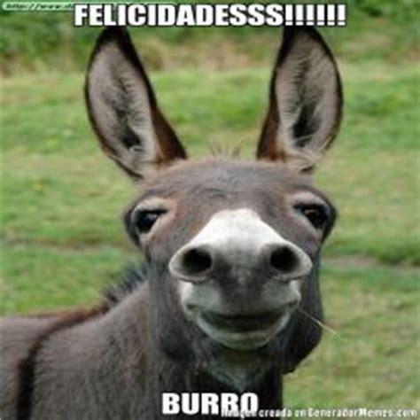galeria  memes de burro