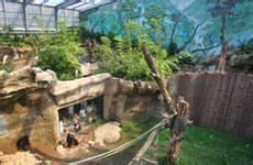 Rostock Zoo Preise : ausflugsziele graal m ritz hotel st rtebeker in graal m ritz an der ostsee ~ A.2002-acura-tl-radio.info Haus und Dekorationen