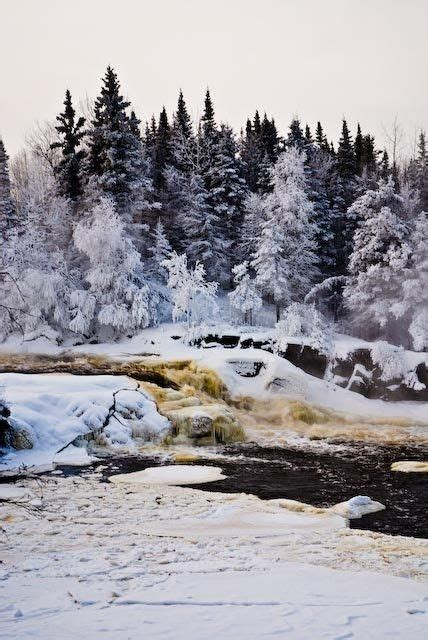 taiga biome images  pinterest beautiful places