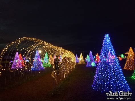 celebrate christmas with nuvali magical field of lights