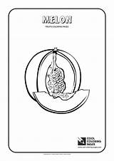 Melon Coloring Pages Cool Melons Horned Fruits Plants Shape Yellow sketch template