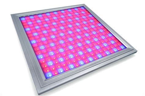 Red And Blue Waterproof Led Grow Lights For Vegetables