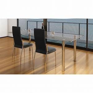 Stühle Esszimmer Günstig : esszimmer st hle 2er set schwarz chrom kunstleder g nstig kaufen ~ Markanthonyermac.com Haus und Dekorationen
