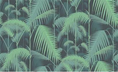 Palm Cole Son Jungle Subtle Tropical Beloved