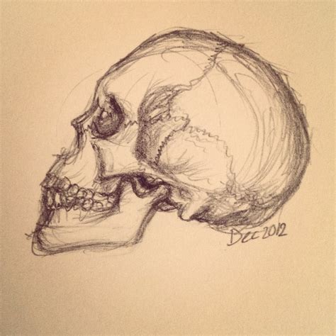 Images Of Tumblr Sketches Of Skulls Golfclub