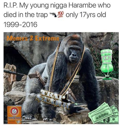 Dank Harambe Memes - rip my young nigga harambe who 1999 2016 extreme baking soda baked meme on sizzle