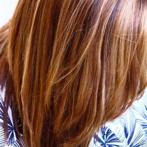 honey highlights on light brown hair light honey brown hair color with highlights