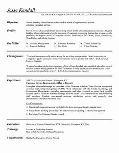 Customer service representative resume objective examples for Career objective for customer service