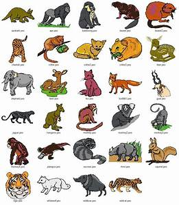 Mammals wild animal best blog: Wild animals list with ...