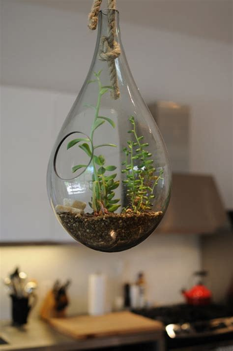 glass hanging planters 17 best images about glass planters on mercury
