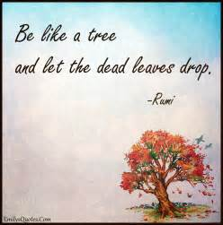 Be Like a Tree Dead Leaves and the Drop Let