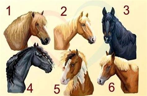 Izvēlies zirgu un uzzini vairāk par savu raksturu! - Spoki