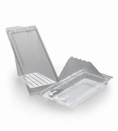 Plastic Sandwich Wedges Packaging Sydney Containers