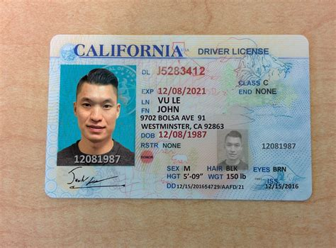 California Id Template Free Id Templates Myoids Id Guide