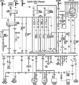 Eec Pinout Diagram Of 1994 1995 Ford Mustang Gt 5 0  59771