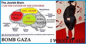 Jewish Brain Wiring Diagram