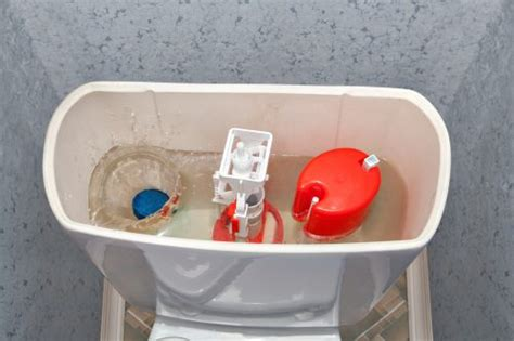 How To Fix A Toilet That Won't Flush  Direct Energy Blog