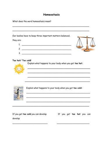 homeostasis worksheet homeschooldressagecom