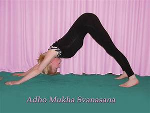 Best Yoga Poses or Exercises to Increase Your Height ...