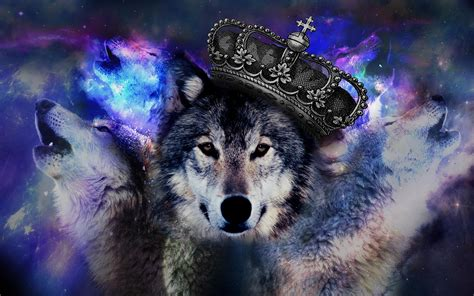 3d Wallpapers Wolf by Pix For Gt Psychedelic Wolf Wallpaper Wolves Wolf