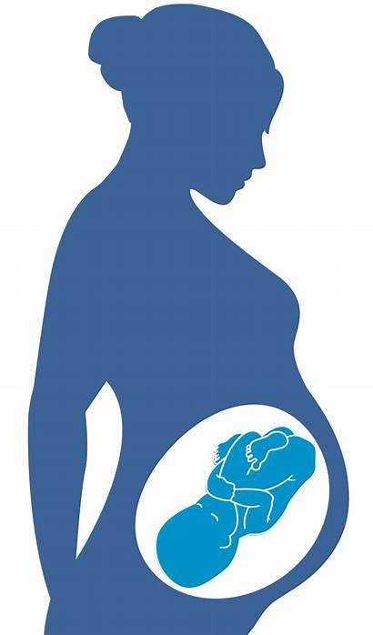 Hiv Pregnancy Clipart Health Virus Transparent Aids
