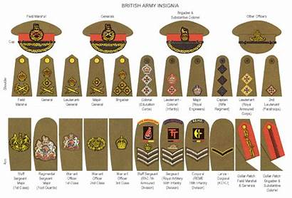 Ranks British Army Guide Brief Armed Forces