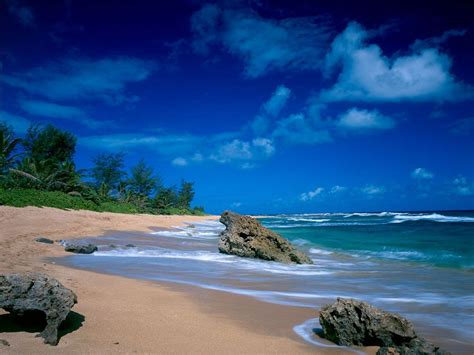 28+ Tropical Beach Backgrounds, Wallpapers, Images