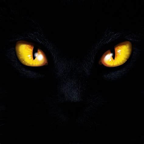 Cat Eyes By Klori On Deviantart