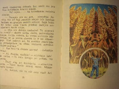 Doniņas ceļojums - Dz. Rinkule - Zemzare - iBook.lv ...
