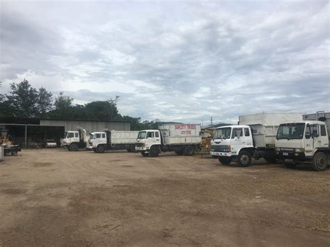 tree services townsville sun city trees mulch