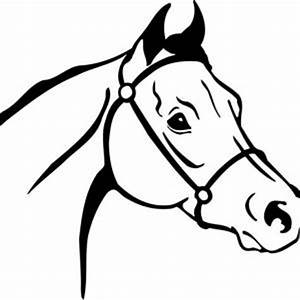Horse Head Clipart - Clipart For Work