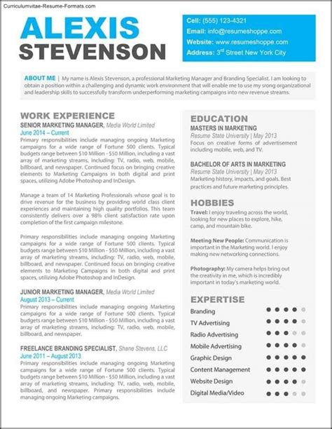 creative professional resume templates free sles