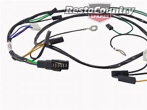 Holden Twin Headlight  Horn Wiring Loom    Harness Hz  H1 Hi Low  New Wire Light