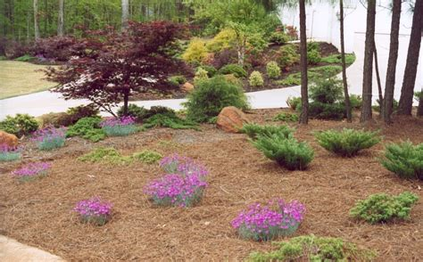 Best Mulch For Flower Beds Pine  Landscaping & Backyards