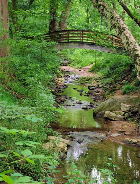 unc botanical gardens bridge at the botanical gardens of asheville