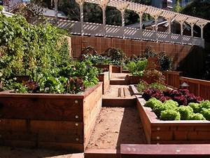 Kentfield estate kitchen garden