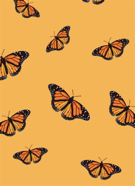 butterfly wallpaper iphone butterfly