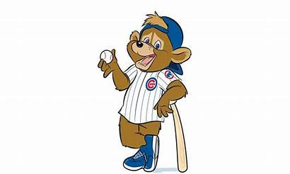 Baseball Cubs Mascot Chicago Coloring Clipart Pages
