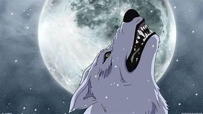 Rain Wolfs Wolf Downloads Wallpapertag