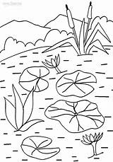 Coloring Lily Pages Water Pad Printable Lilies Flower Sheets Cool2bkids Drawing Flowers Painting Plants Plant Pads Glass Patterns Getcolorings Floating sketch template