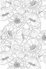 Coloring Pages Teens Printable Flowers Colouring Sheets Flower Adult Detailed Stress Books Anti Doodle Teenagers Coloriage Bestcoloringpagesforkids Pour Ak0 Adulte sketch template