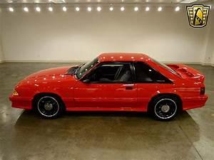 1993 Ford Mustang Cobra R For Sale O'Fallon, Illinois