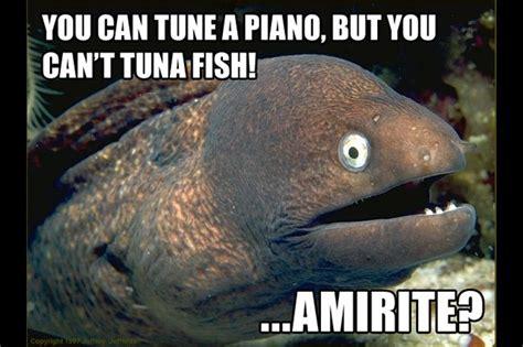 Bad Joke Eel Meme - bad joke eel fishing meme gallery fish around