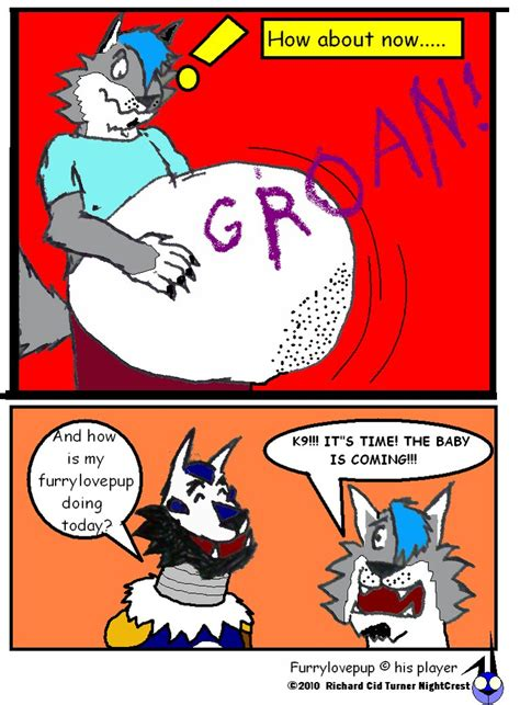 furylovepups pregnancy   nightcrestcomics  deviantart