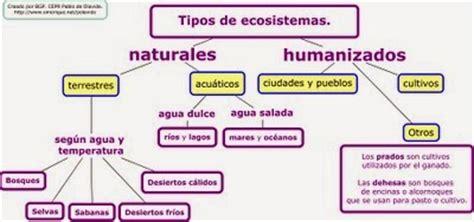 mi clase de tercero cuarto y quinto los ecosistemas