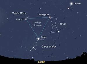 5 Cool Dog Constellations To Get You And Your Pup Gazing ...